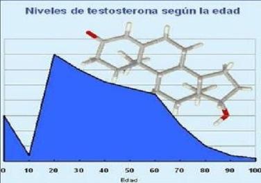 suplementos de testosterona y cáncer de próstata