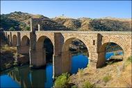 La construcción de los puentes romanos enHispania